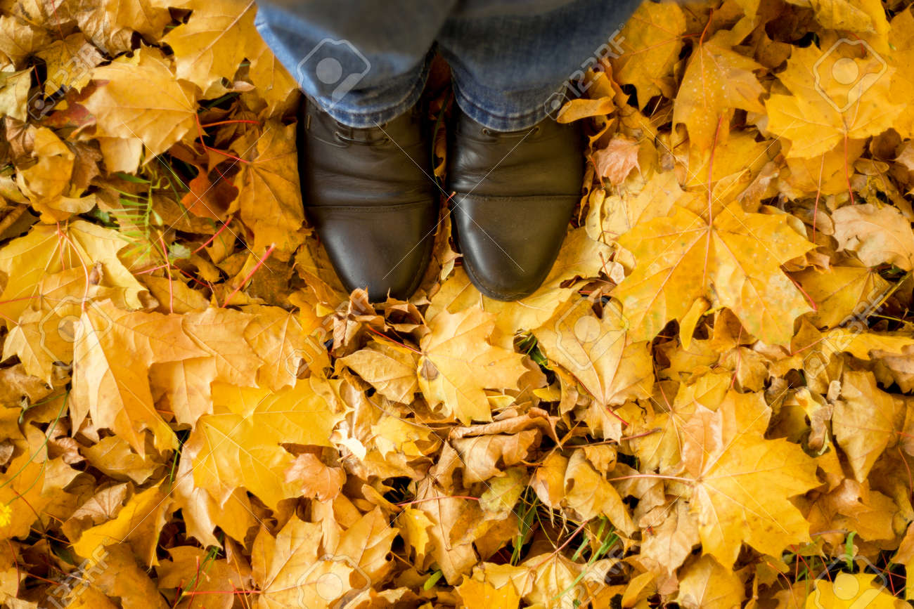 Fall, autumn, leaves, legs and shoes. Conceptual image of legs in boots on the autumn leaves. Feet shoes walking in nature - 152316374