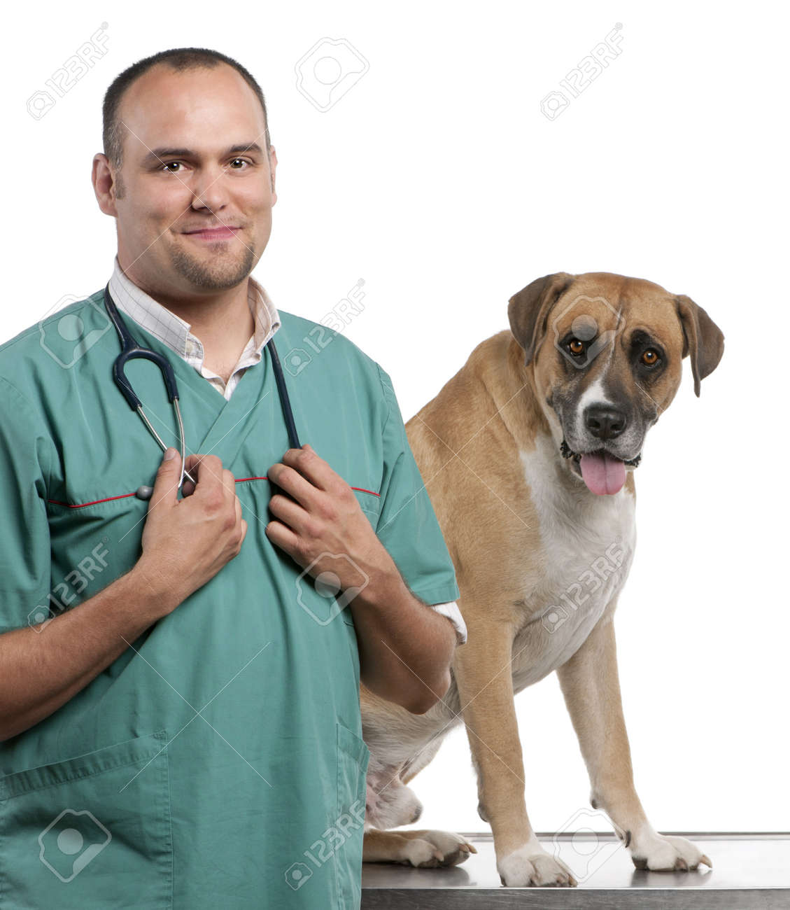 Vet standing next to a Crossbreed dog, dog in front of white background Stock Photo - 12668025