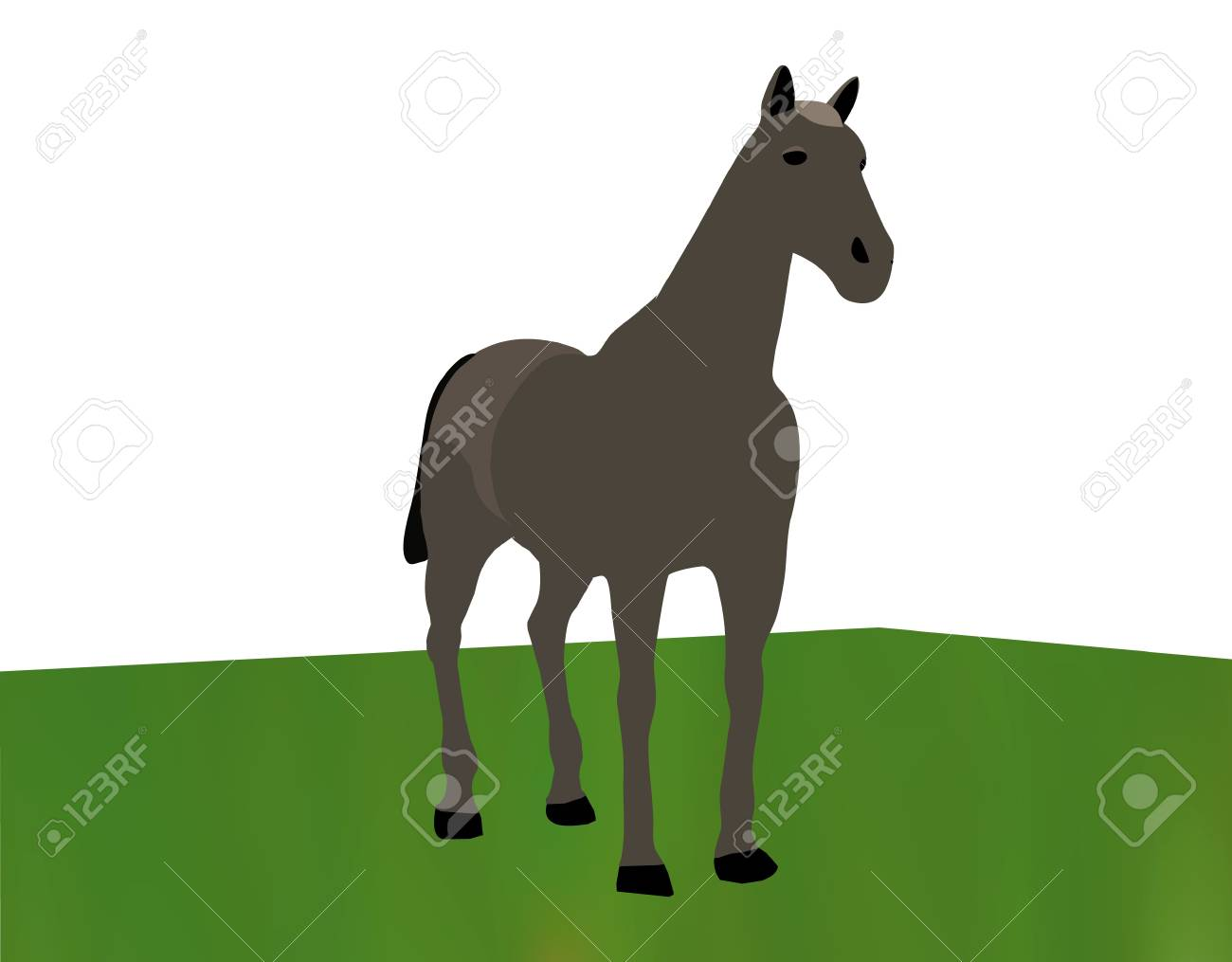 horse portrait standing against white background on grass Stock Vector - 18586645