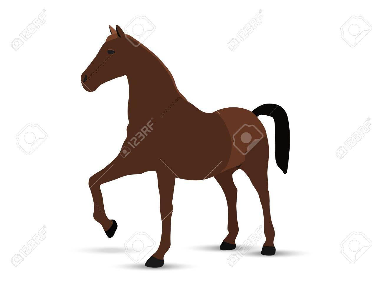 horse portrait  standing against white background Stock Vector - 18586860