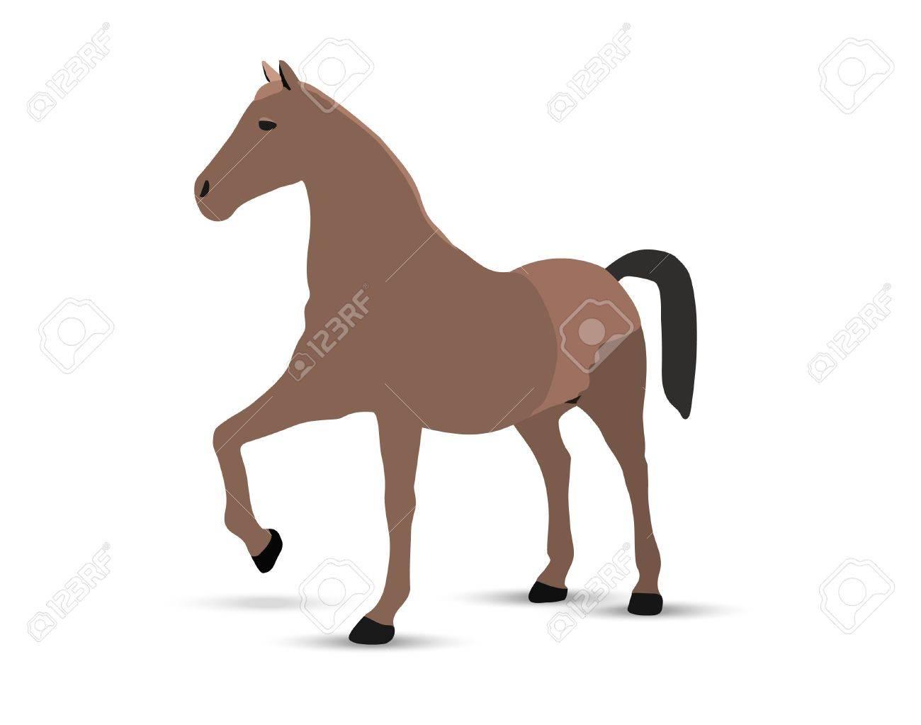 horse portrait  standing against white background Stock Vector - 18586859