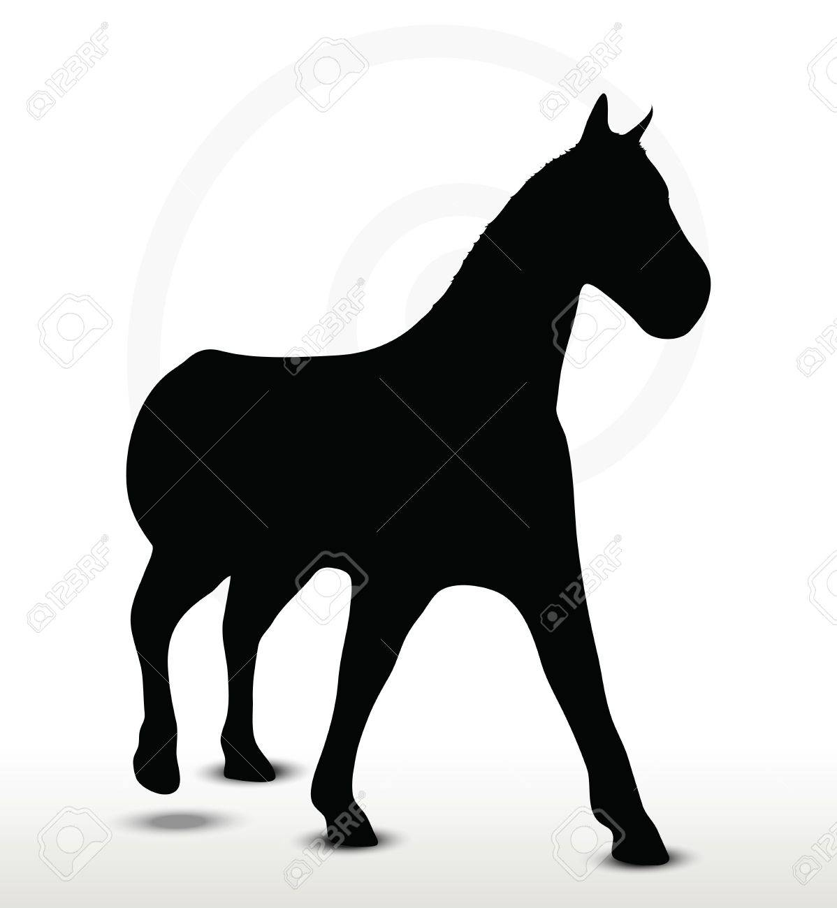 Horse Silhouette In Walking Position Royalty Free Cliparts Vectors And Stock Illustration Image 29208483