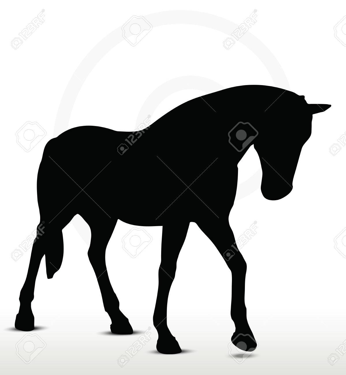 Horse Silhouette In Walking Head Down Position Royalty Free Cliparts Vectors And Stock Illustration Image 29208563