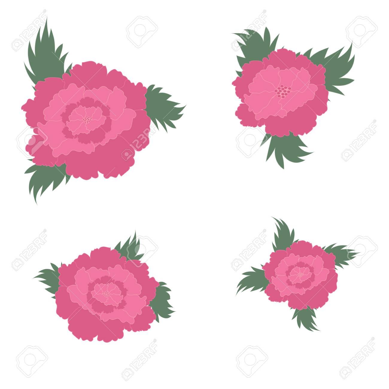 Rosa Pfingstrose Mit Blättern Auf Einem Weißen Hintergrund Hintergrund Hochzeit  Einladung Geburtstag Veterans Day Day Valentinstag