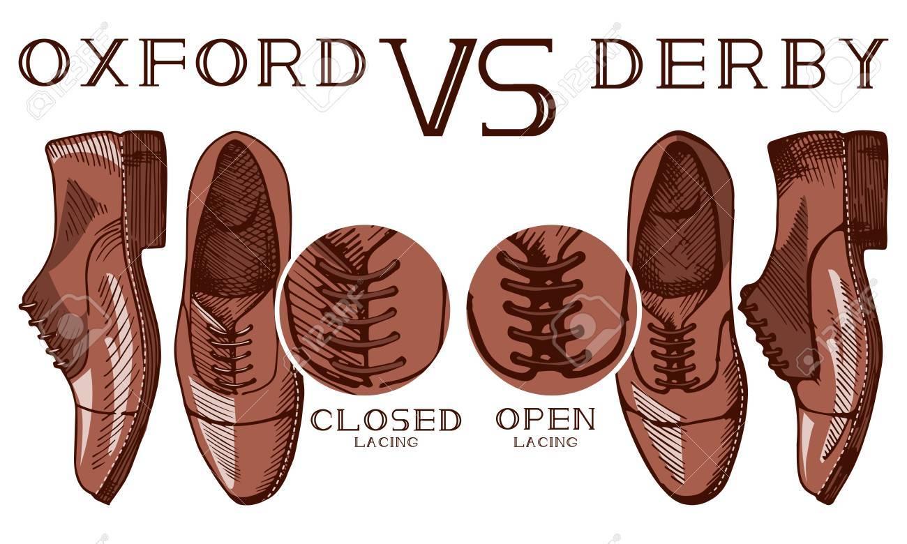 La Différence Infographie Vectorielle Illustration D'une Illustrant qRvTqIw