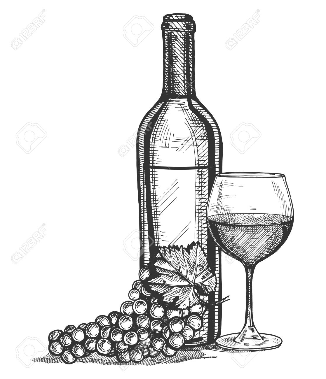 Vector illustration of a wine glass, bottle and grapes bunch still life. Vintage engraving style. - 96687198