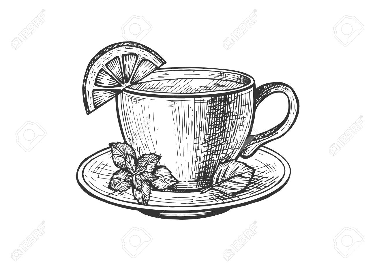 Vector Illustration Of Tea Service Sketch Set Hot Beverage In Royalty Free Cliparts Vectors And Stock Illustration Image 122894157