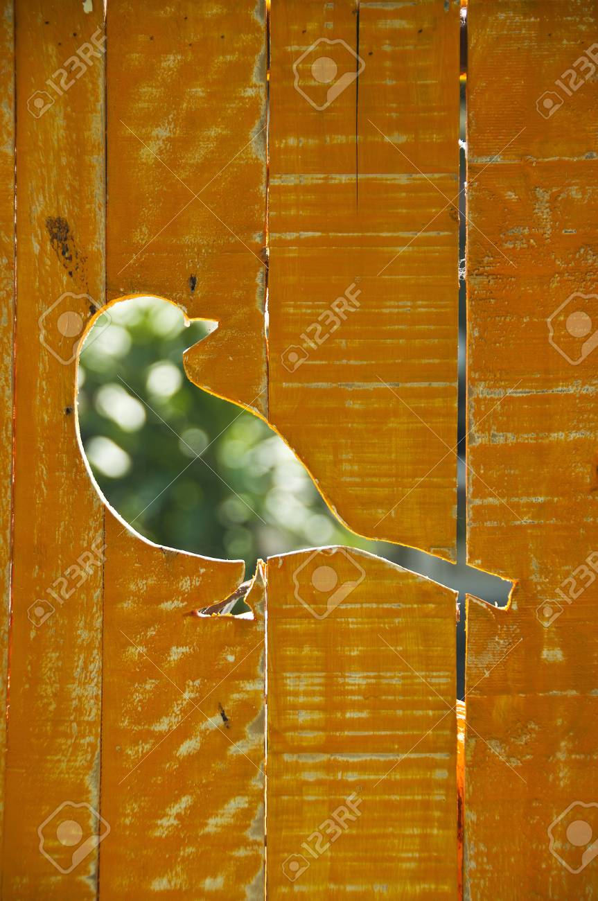Bird Stock Photo - 18496888