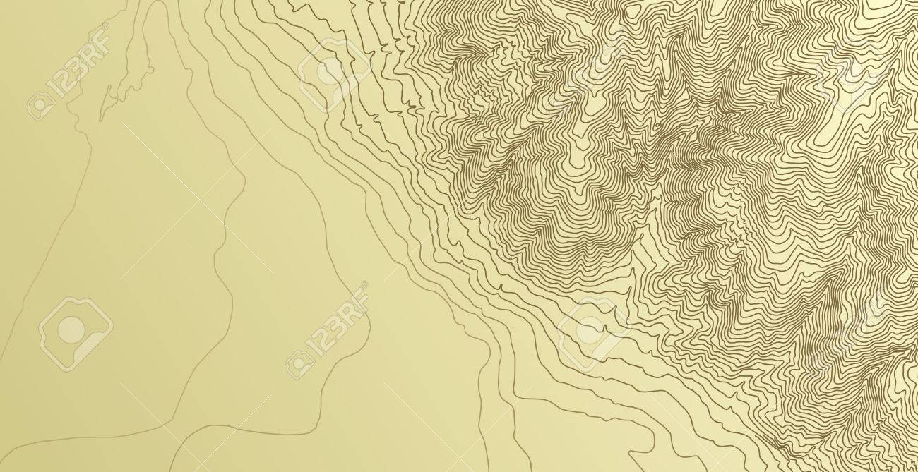 Topographic map background concept - 39074408