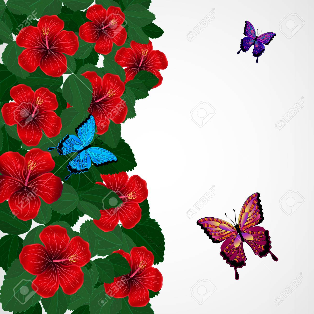Floral Design Background Hibiscus Flowers With Butterflies Royalty