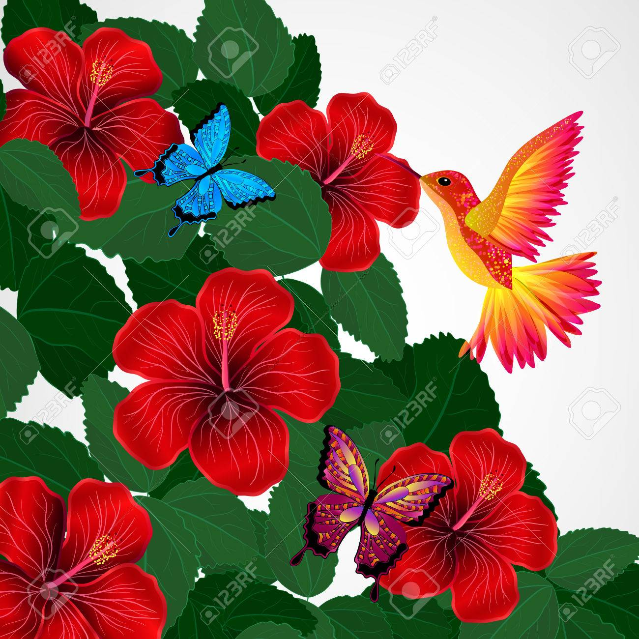 Floral Design Background Hibiscus Flowers With Bird Butterflies