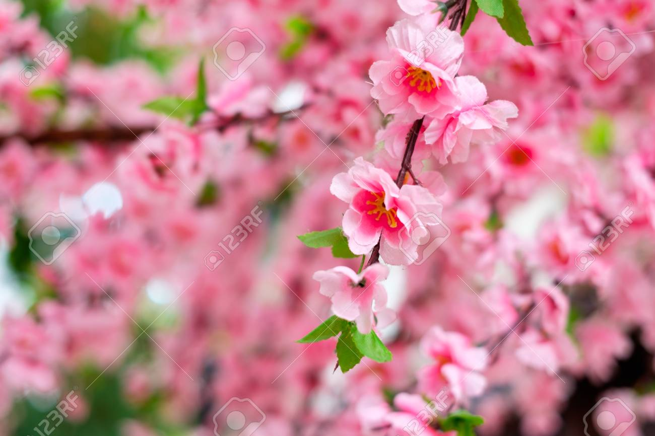 Close Up Of Fake Pink Sakura Flowers Decorated In Japanese Style