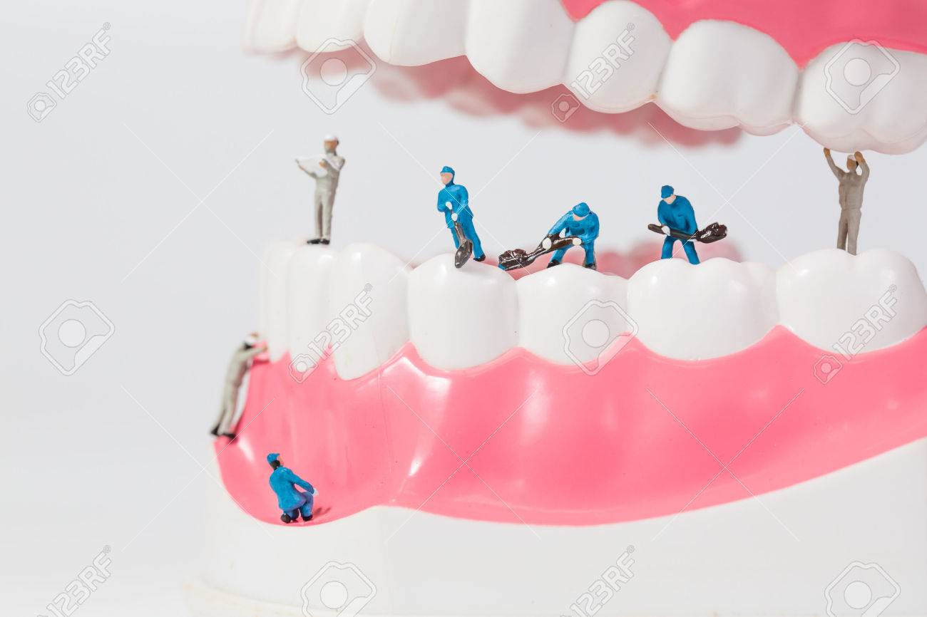 People to clean tooth model - 69092666