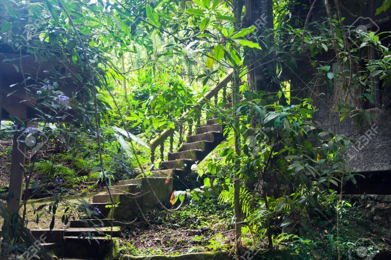 Tanim Magic Buddha Garden Koh Samui Island Thailand Stock Photo
