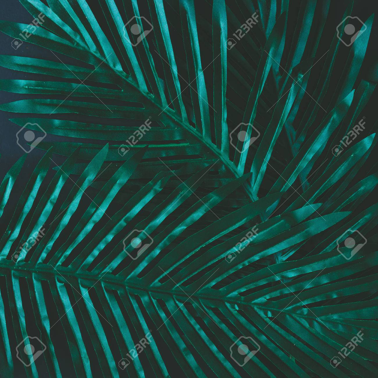 Creative layout made of tropical flowers and leaves. Flat lay. Nature concept - 72948708