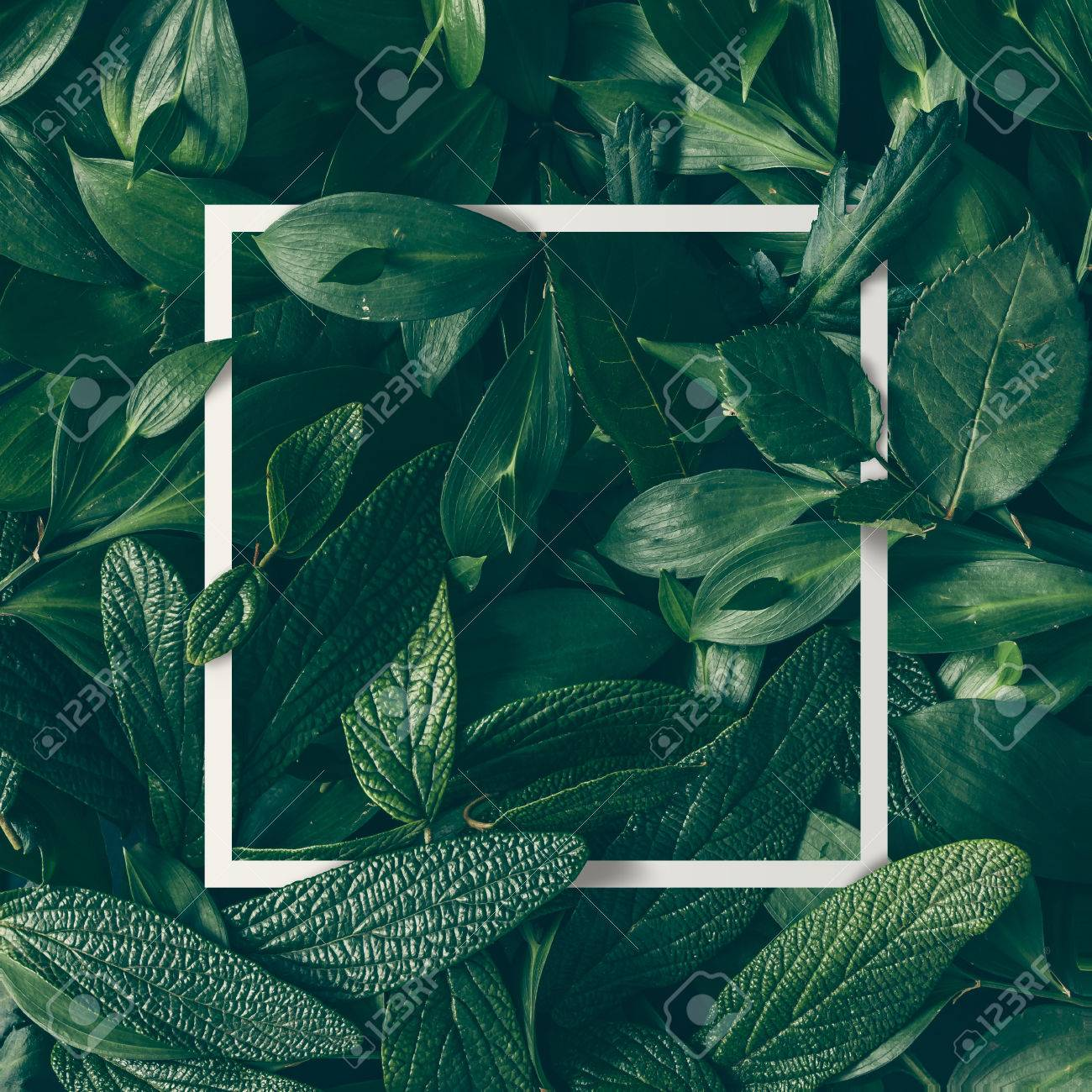 Creative layout made of flowers and leaves with paper card note. Flat lay. Nature concept - 74236947