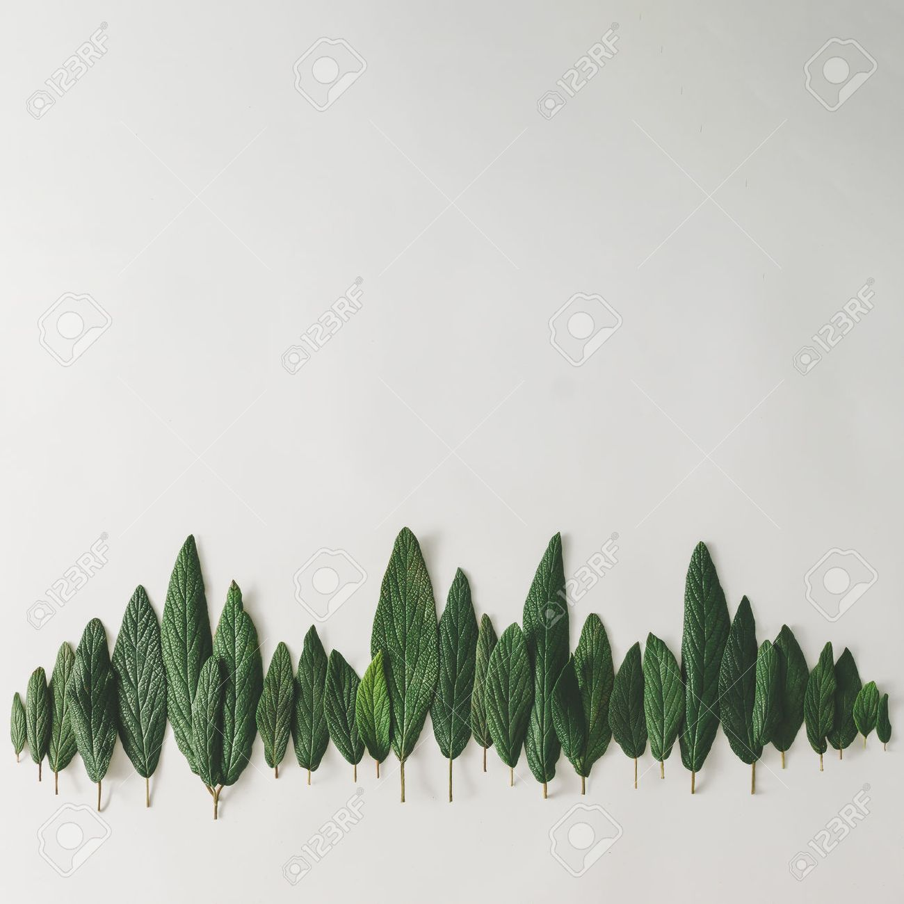 Forest treeline made of green leaves on bright background. Minimal nature concept. Flat lay. - 76154391