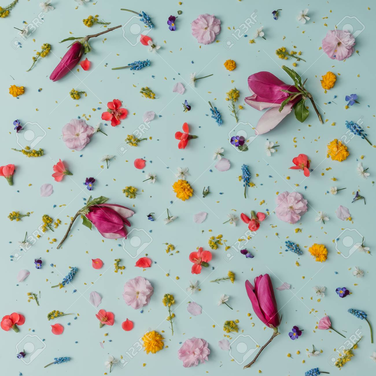 Creative Pattern Made Of Colorful Spring Flowers Minimal Style