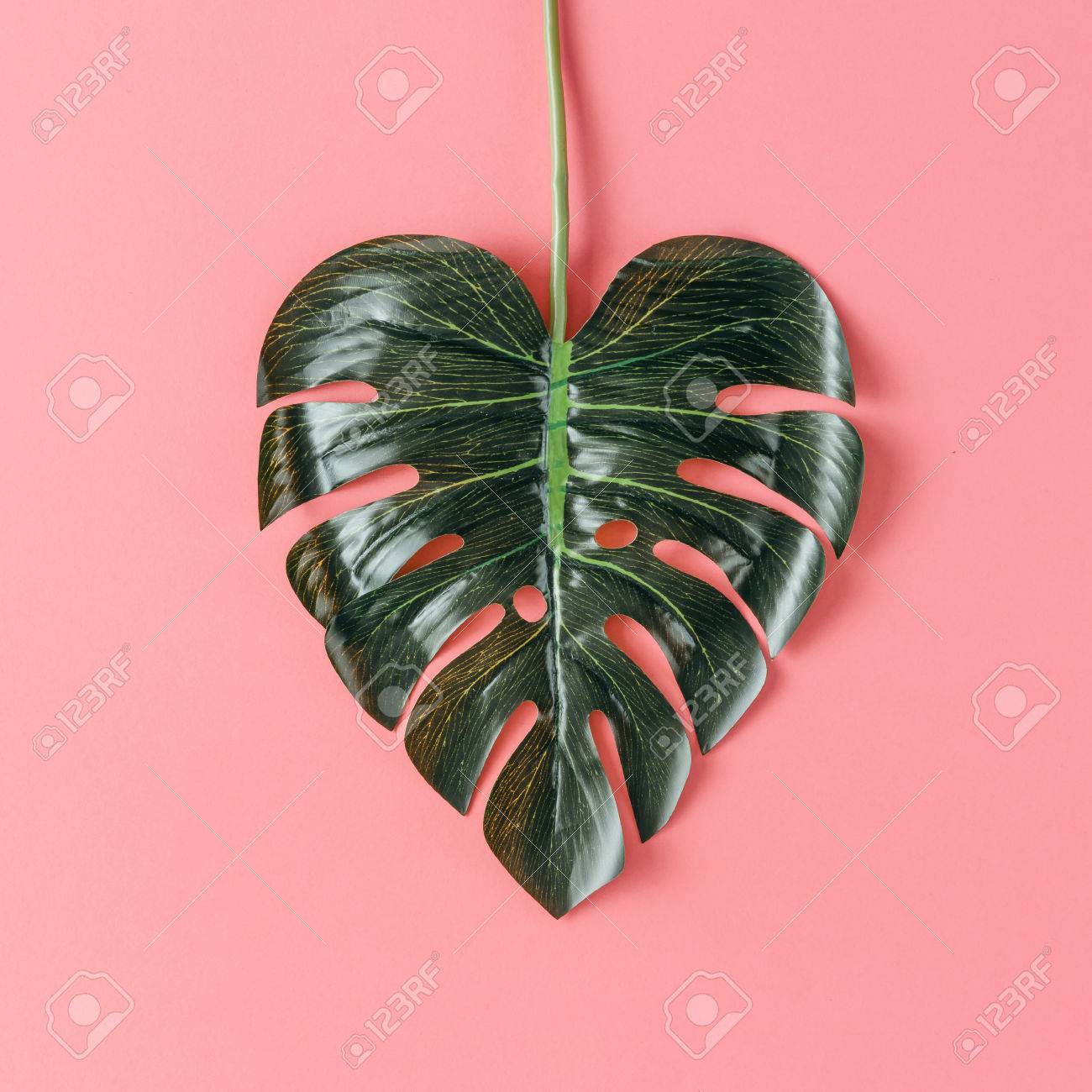 Tropical leaf in shape of a heart. Mothers day love concept. Flat lay. - 76156389
