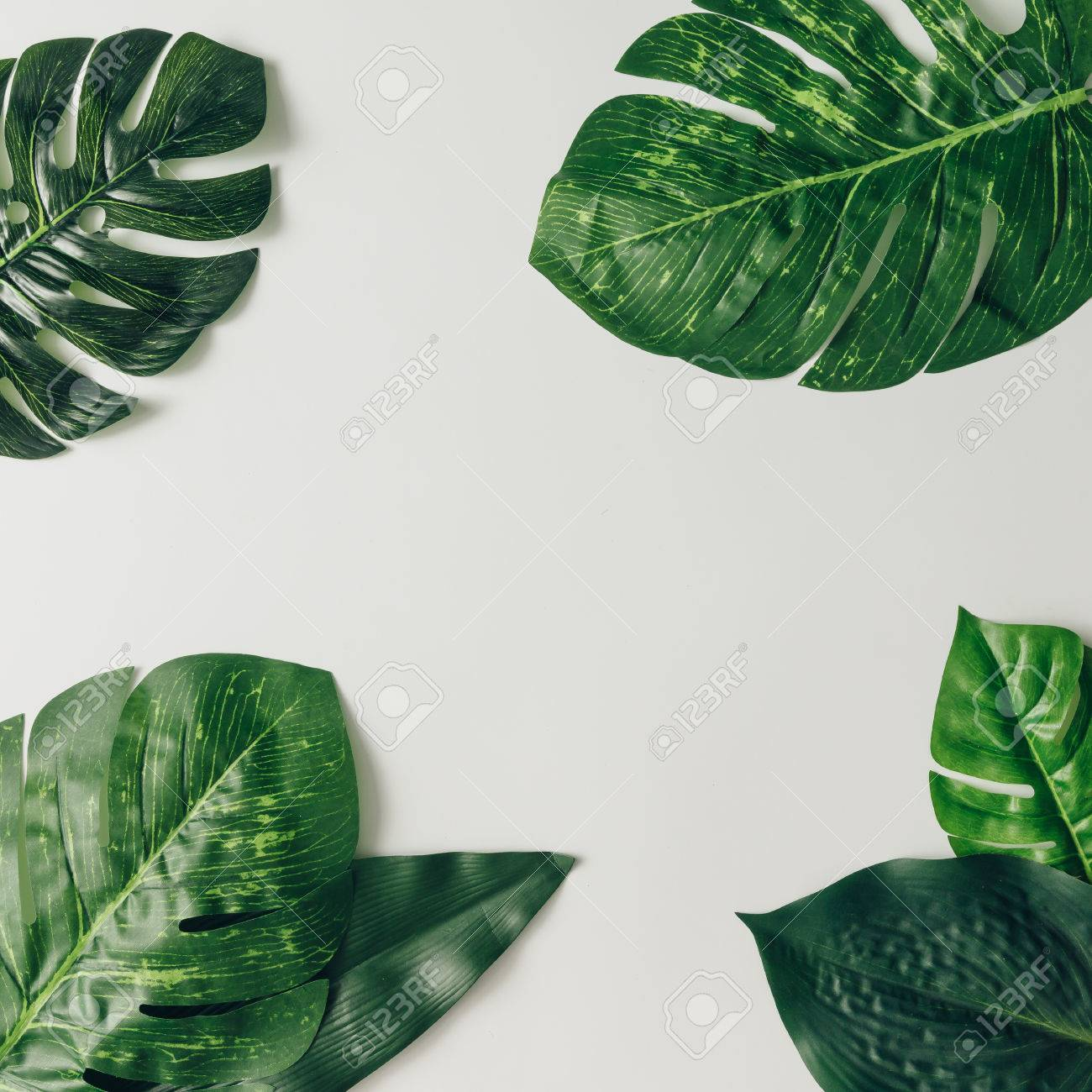 Creative nature layout made of tropical leaves and flowers. Flat lay. Summer concept. - 76695988