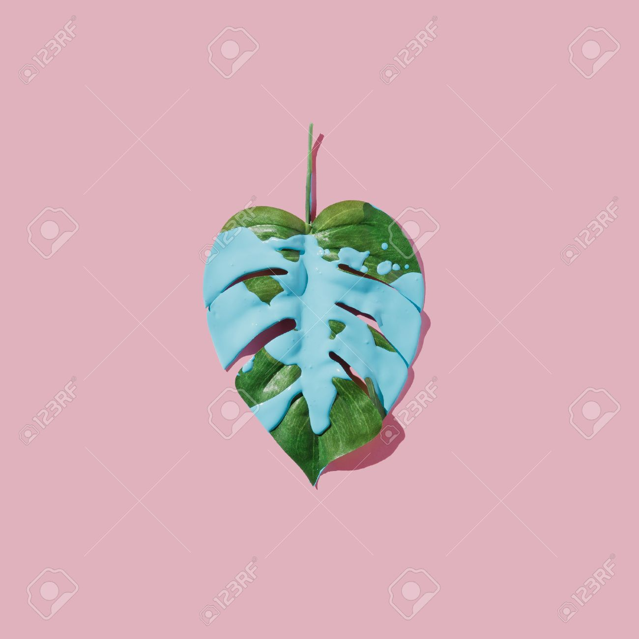 Blue paint splatter over tropical leaf on pink pastel background. flat lay. Minimal concept. - 82877724