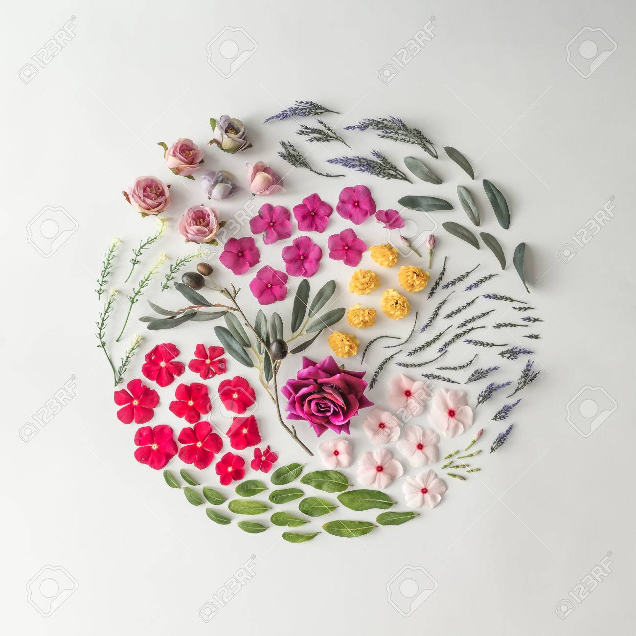 Creative layout made of various flowers. Flat lay. Nature background - 85113241