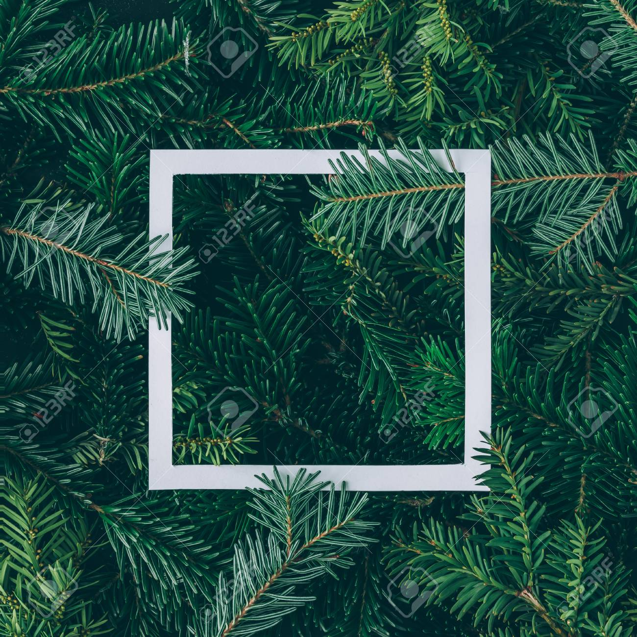 Creative layout made of Christmas tree branches with paper card note. Flat lay. Nature New Year concept. - 90445019