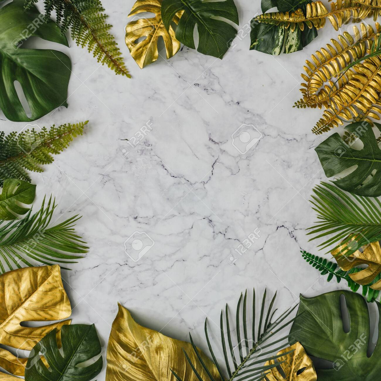 Top View Of Green And Gold Tropical Leaves On White Marble Background Stock Photo Picture And Royalty Free Image Image 127507043 66,462 tropical leaves premium high res photos. top view of green and gold tropical leaves on white marble background