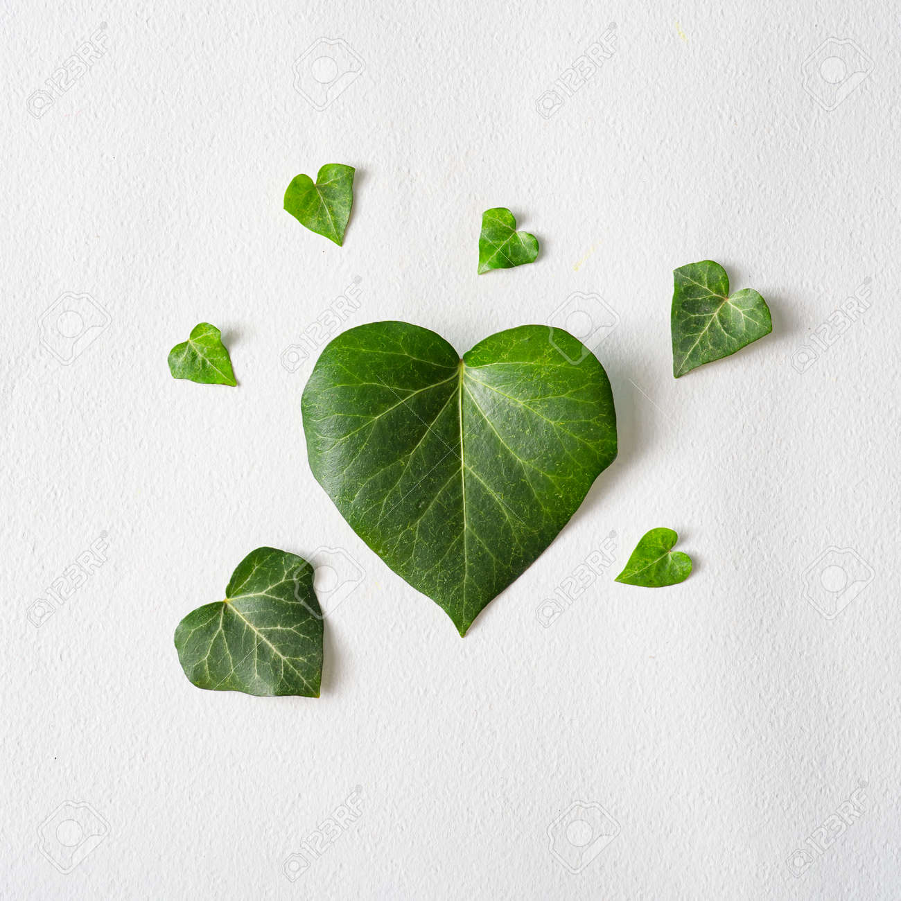 Love valentines concept. Heart shape leaves with paper card note. Minimal flat lay green background. Design valentine or woman's day template. - 162580134