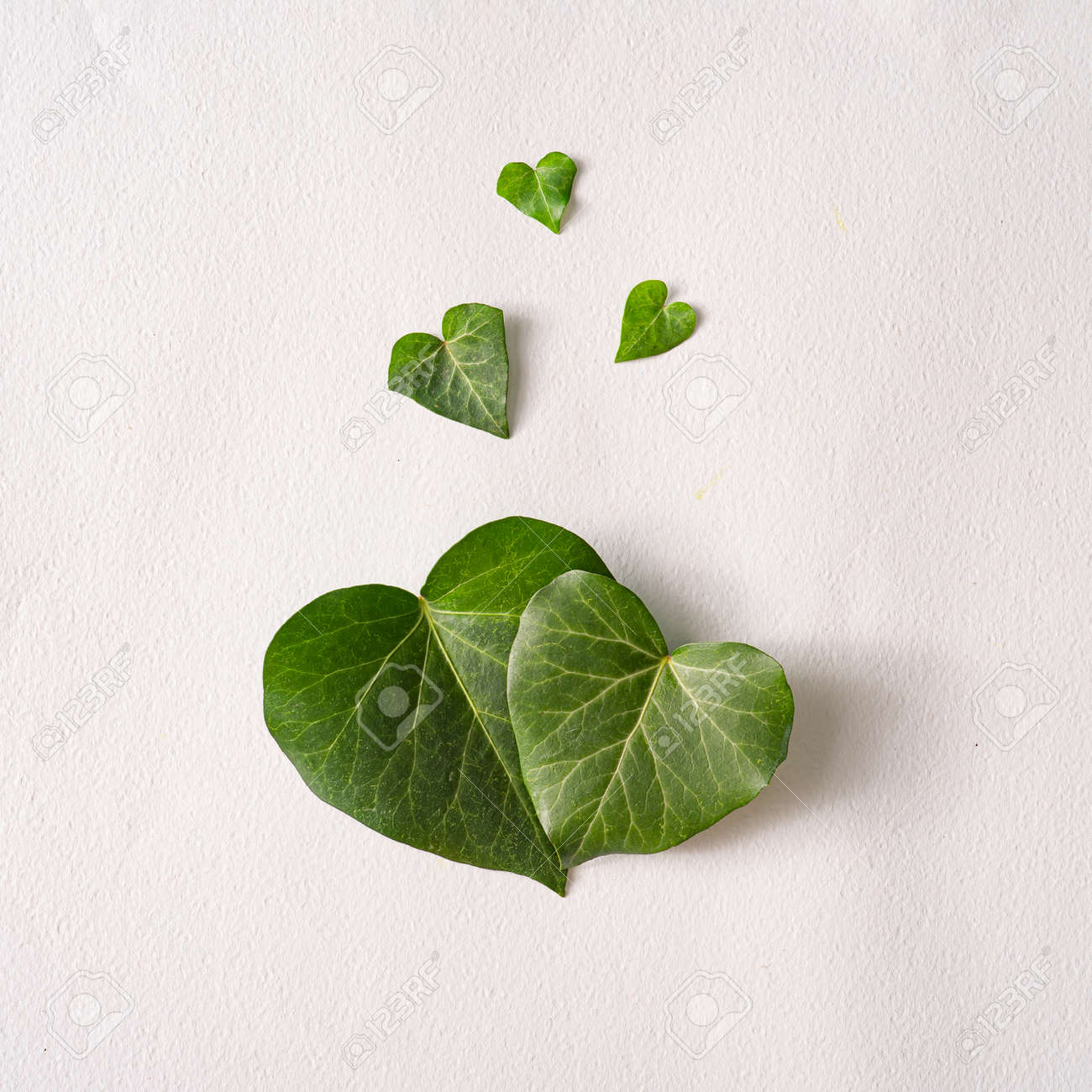 Love valentines concept. Heart shape leaves with paper card note. Minimal flat lay green background. Design valentine or woman's day template. - 162580146