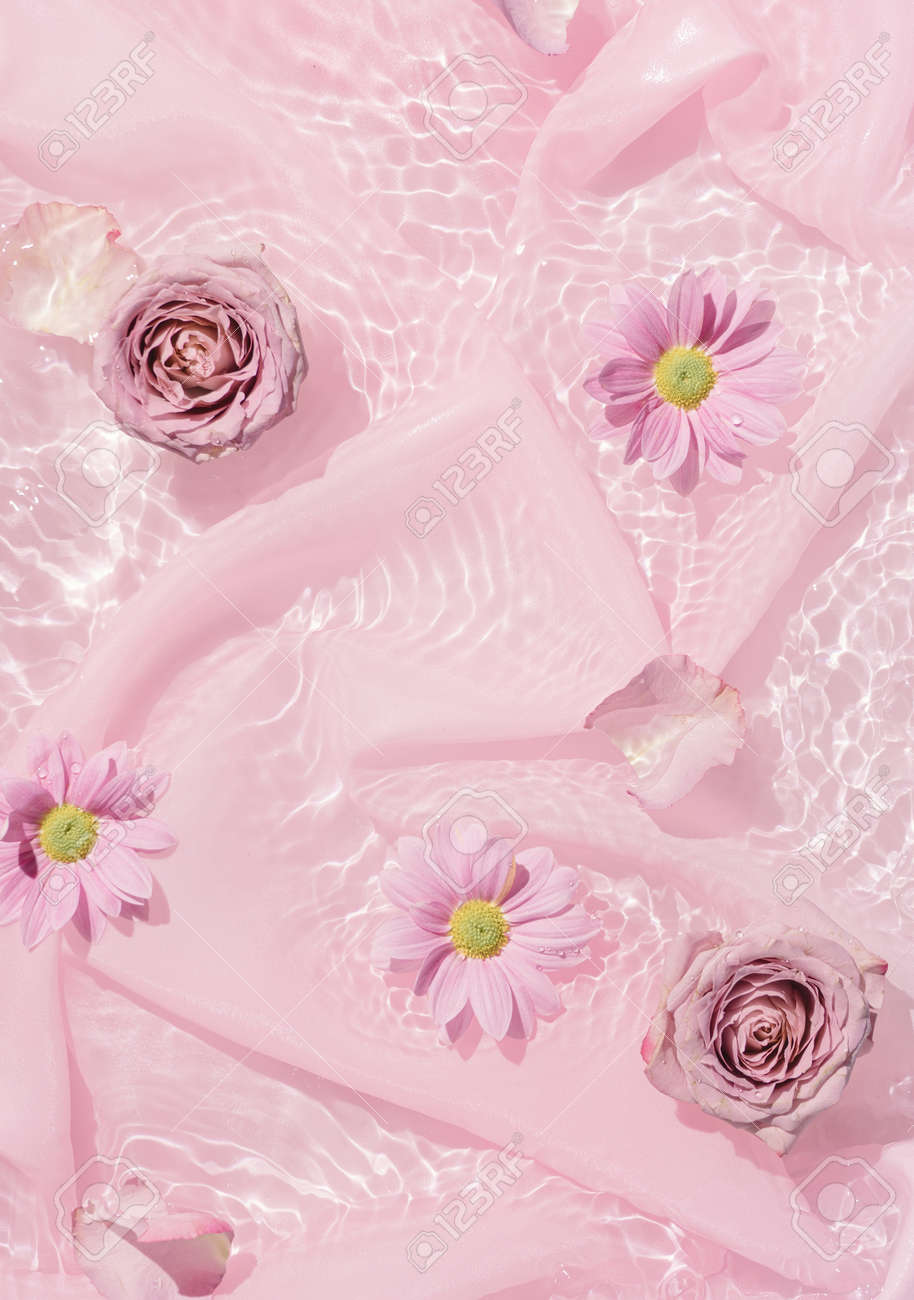 Pink rose flowers in water with silk fabric. Valentines or woman's day background design. Minimal flat lay nature. - 162580147