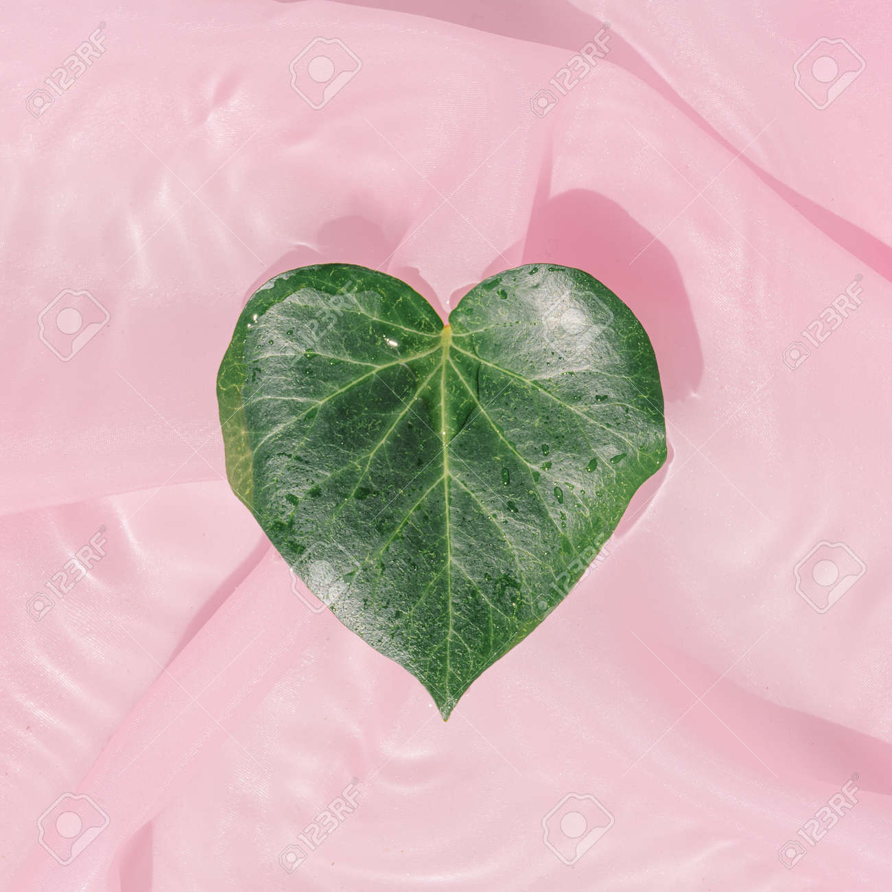 Heart shaped leaf in water with pink silk fabric. Minimal creative valentines or woman's day concept. Nature flat lay. - 162580162