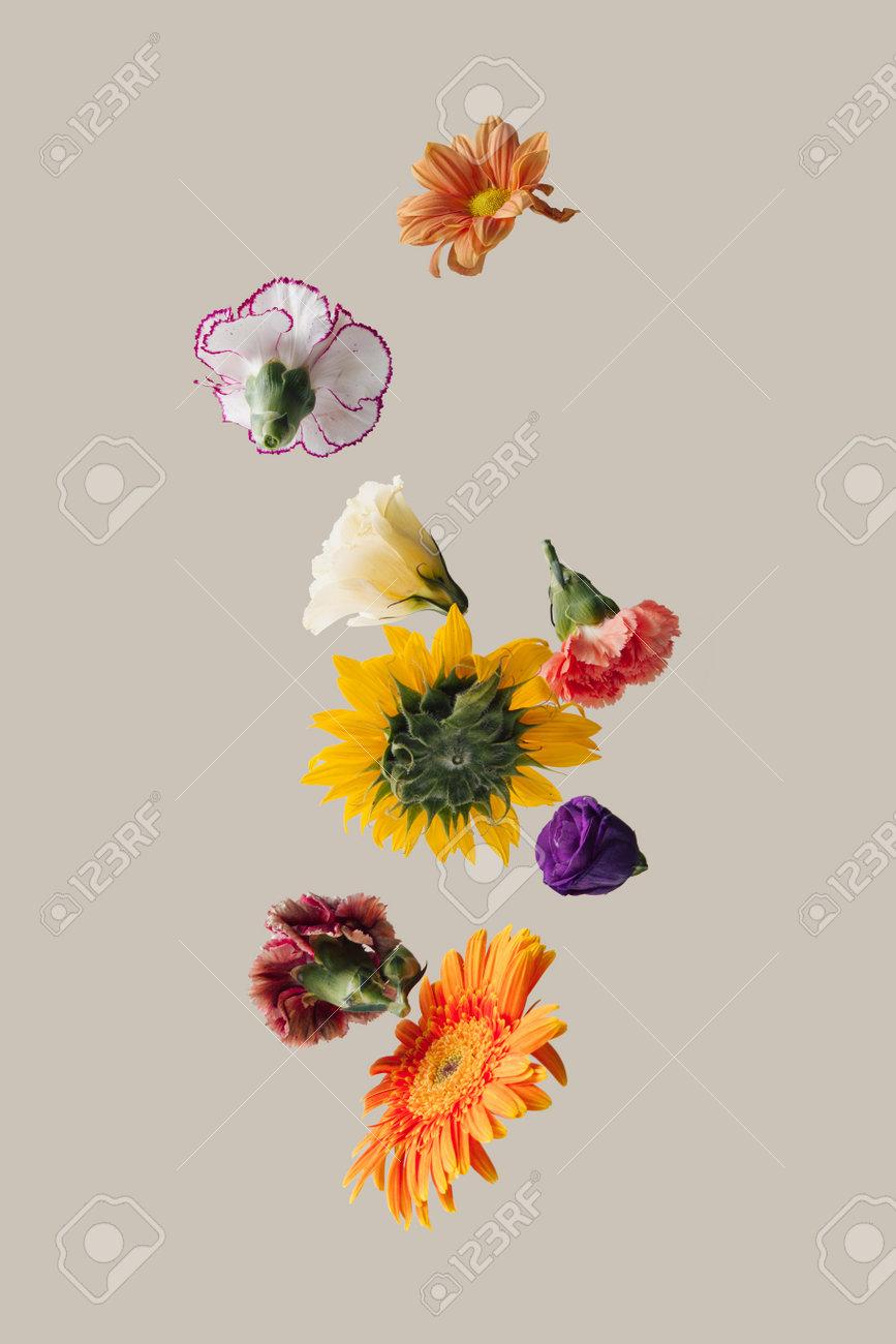 Creative arrangement with various spring flowers against pastel beige background. Minimal nature concept. - 163336766