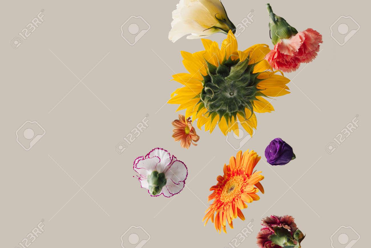 Creative arrangement with various spring flowers against pastel beige background. Minimal nature concept. - 163336847