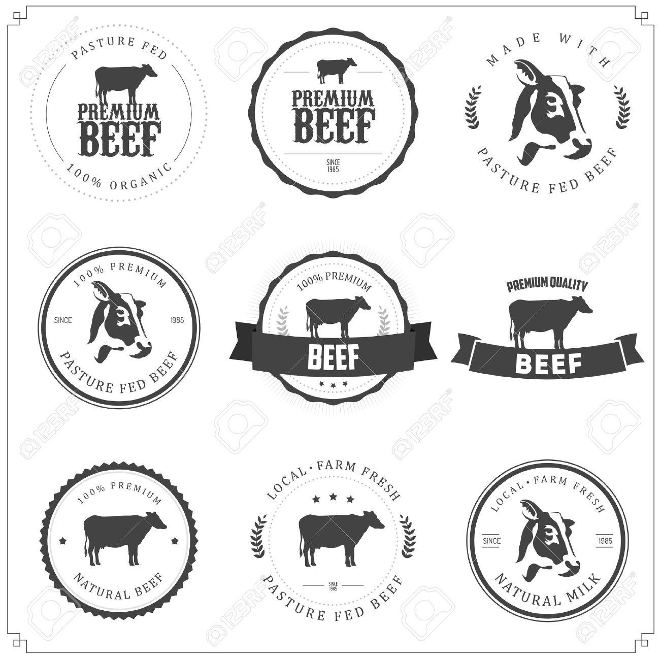 Set of premium beef labels, badges and design elements Stock Vector - 17773311