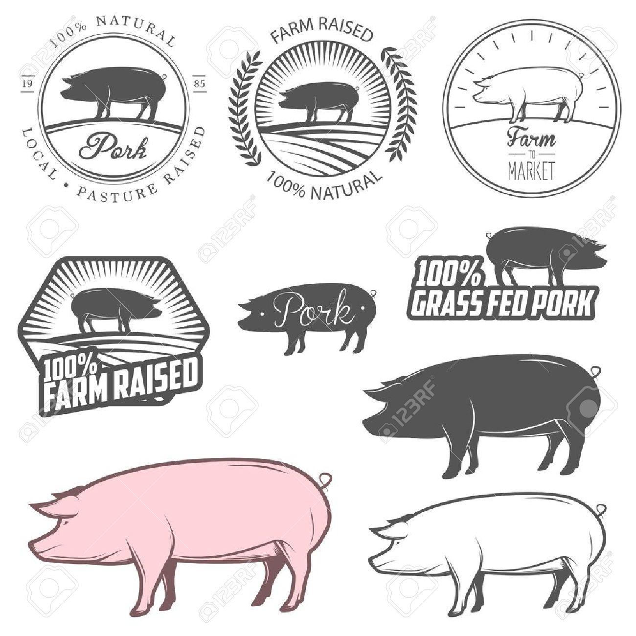 Set of pork labels, badges and design elements Stock Vector - 21019670