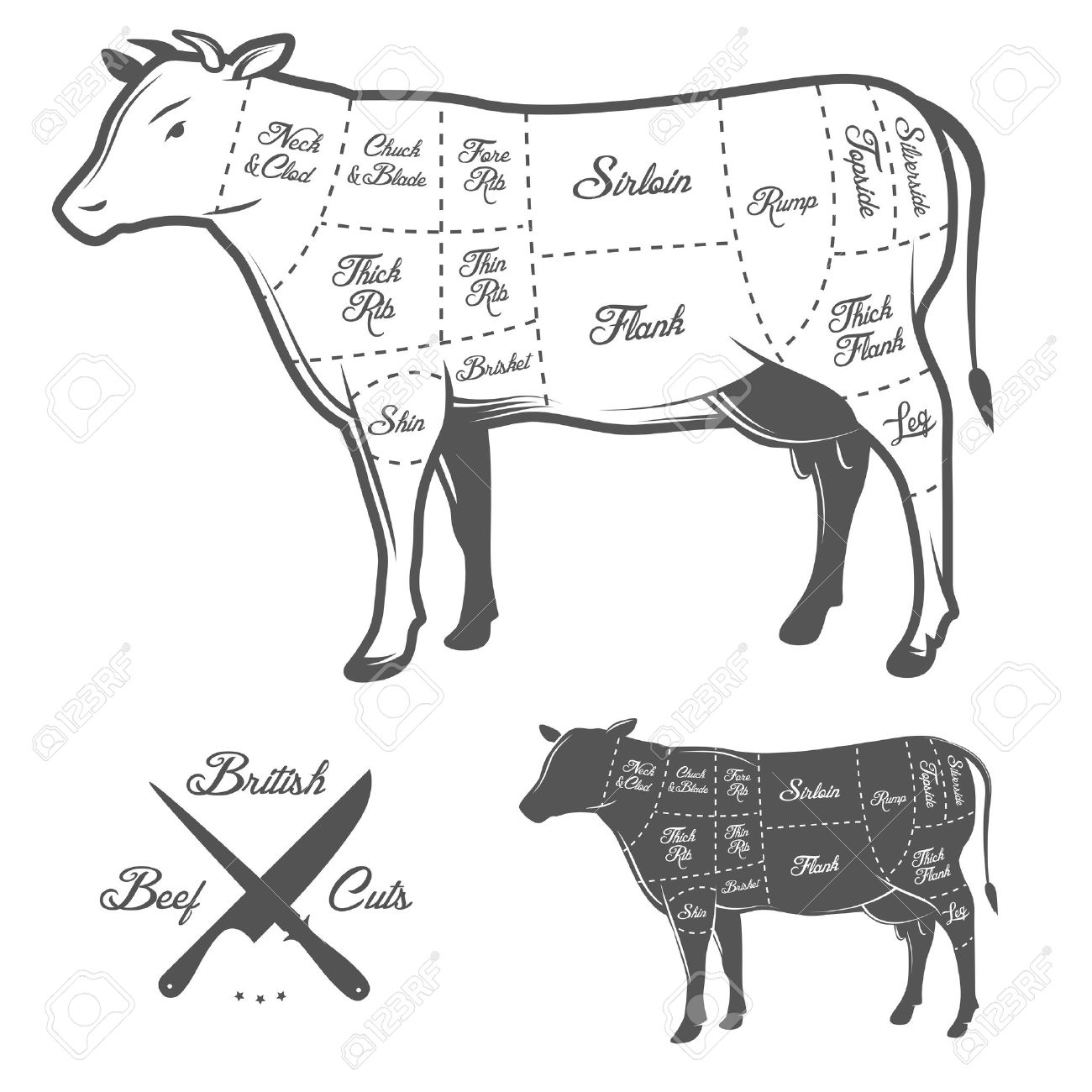 British butcher cuts of beef diagram royalty free cliparts vectors british butcher cuts of beef diagram stock vector 29494037 ccuart Gallery