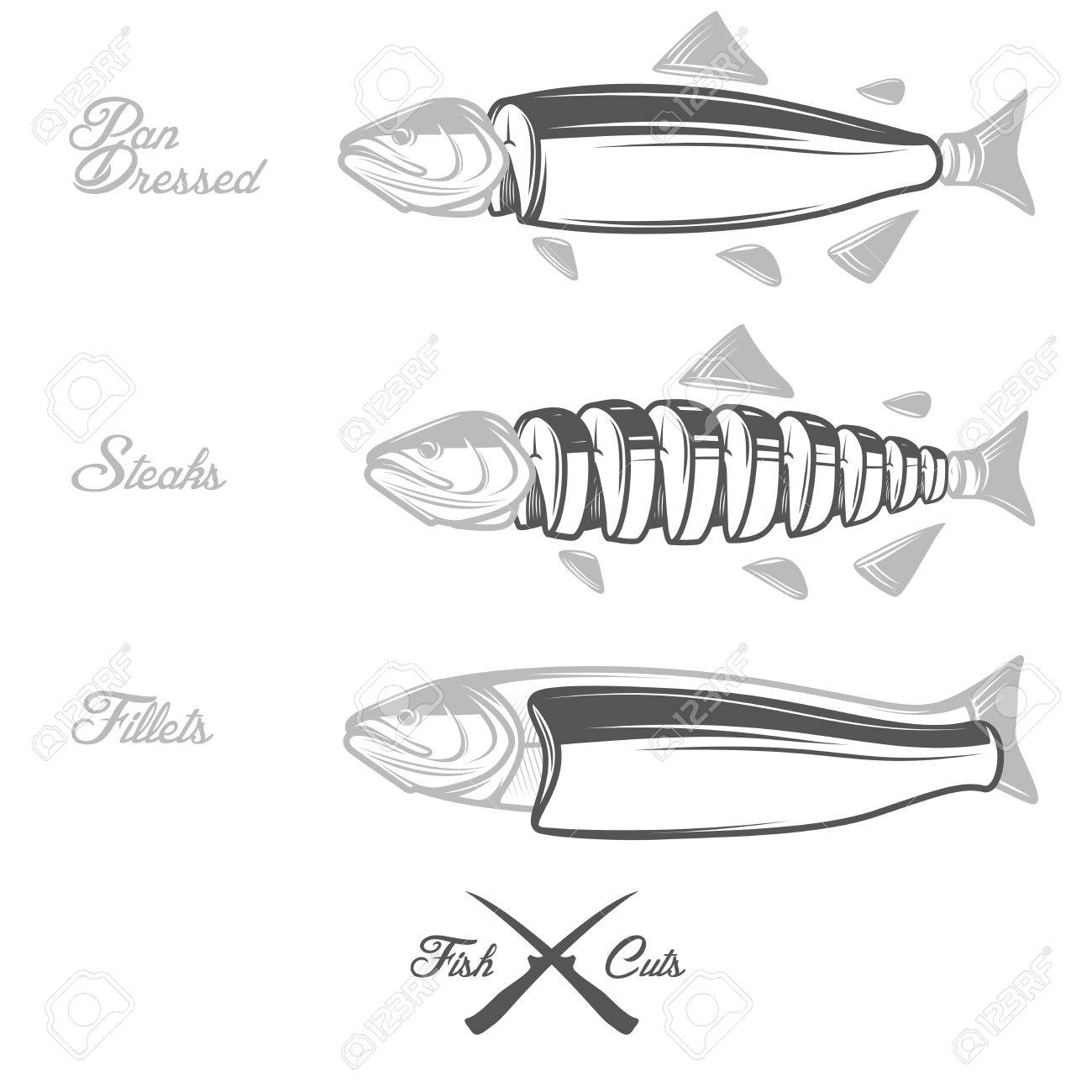 Cuts Of Salmon Diagram - Collection Of Wiring Diagram •