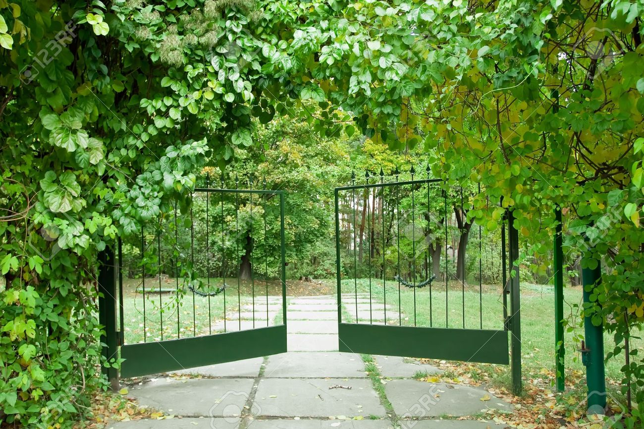 Iron gate in a beautiful green garden Stock Photo - 16153929