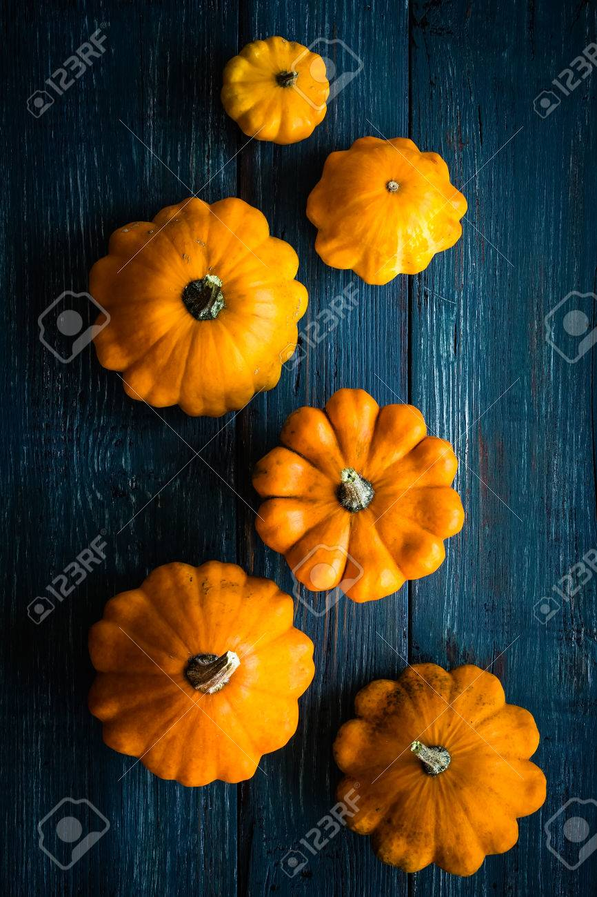 pumpkin - 32542239