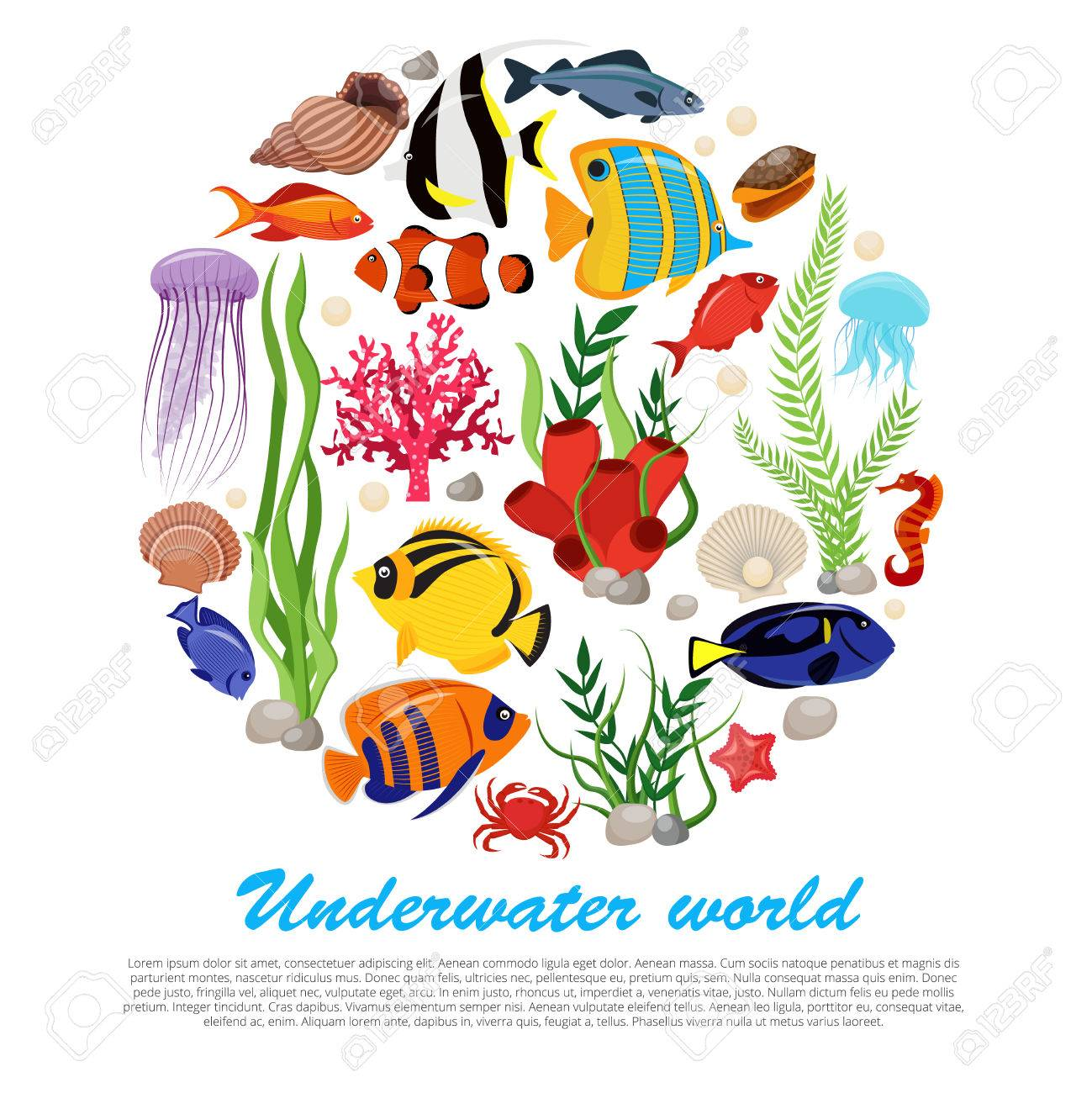 Sea life animals plants poster with isolated icon set combined in big round and underwater world description vector illustration - 62918377