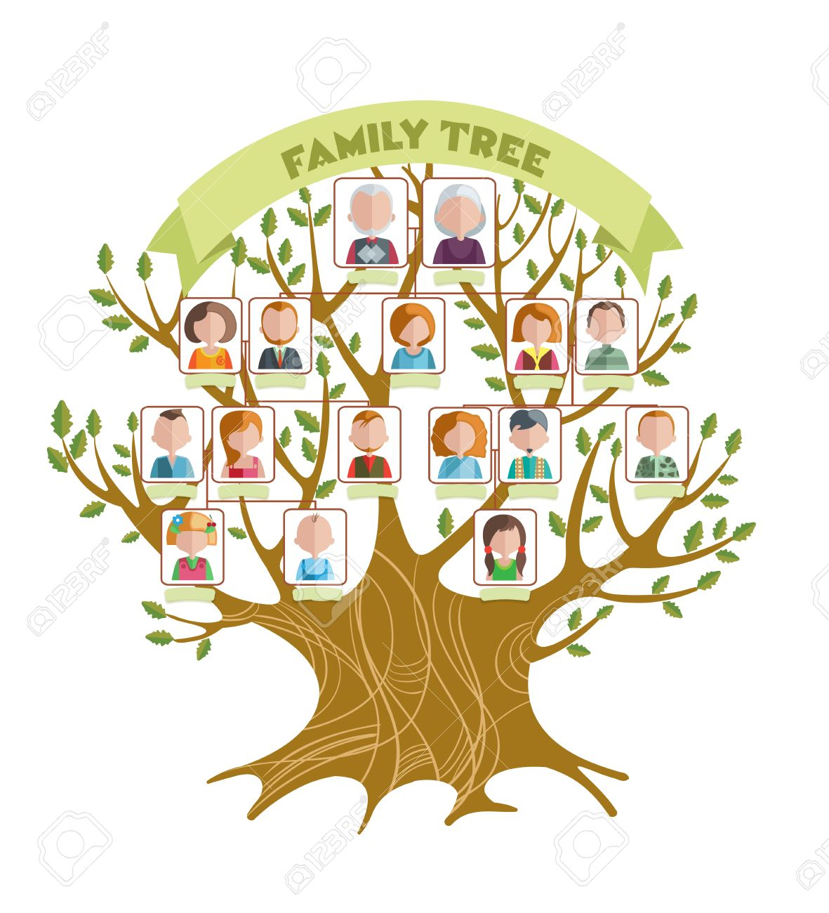 Concept Of Family Tree With Green Ribbon And Pictures Relatives On Branches Leaves Illustration
