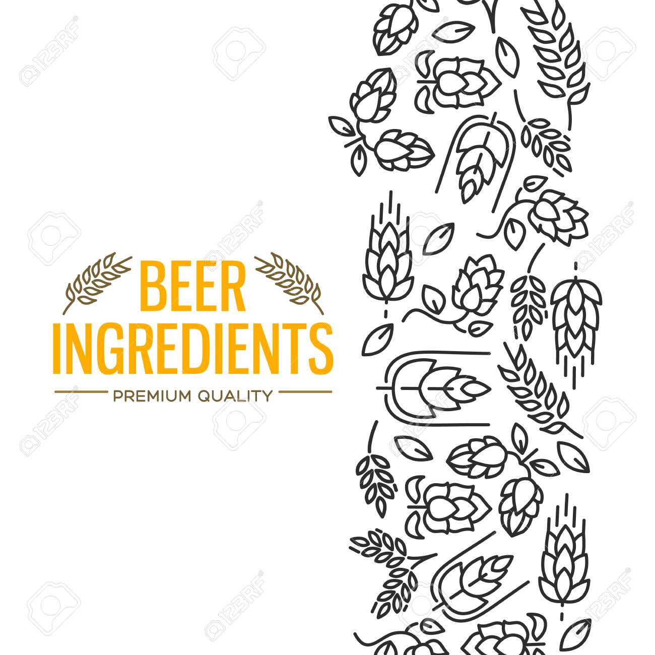 Stylish design card with images to the right of the yellow text beer ingredients of flowers, twig of hops, blossom, malt vector illustration - 93567348