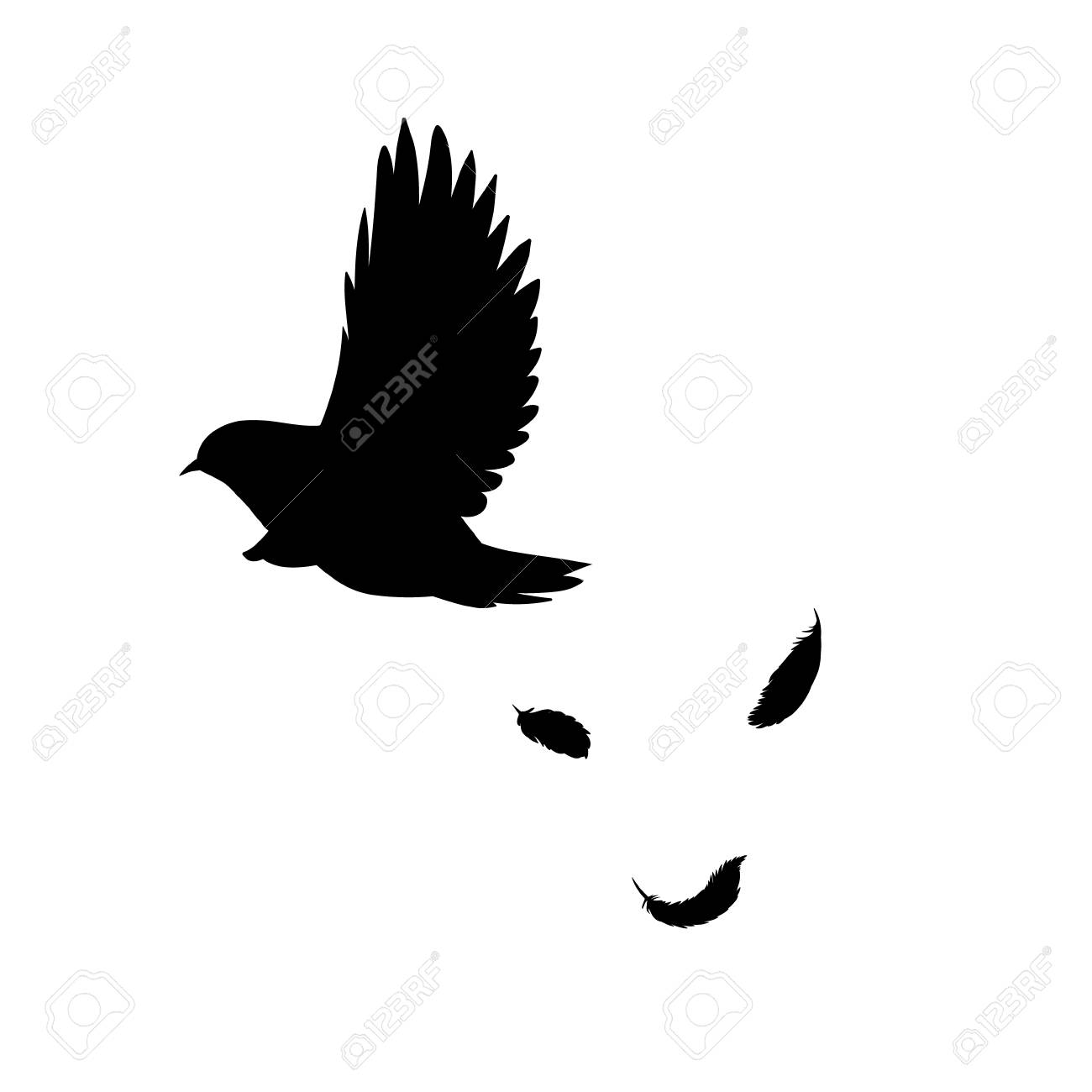 black flying bird silhouette concept with falling feathers in