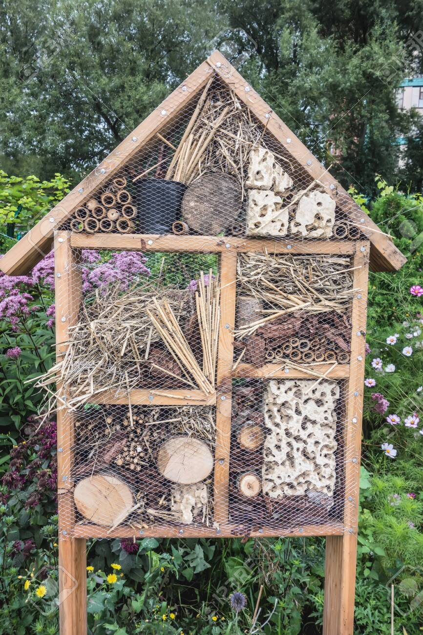 Insect bug hotel