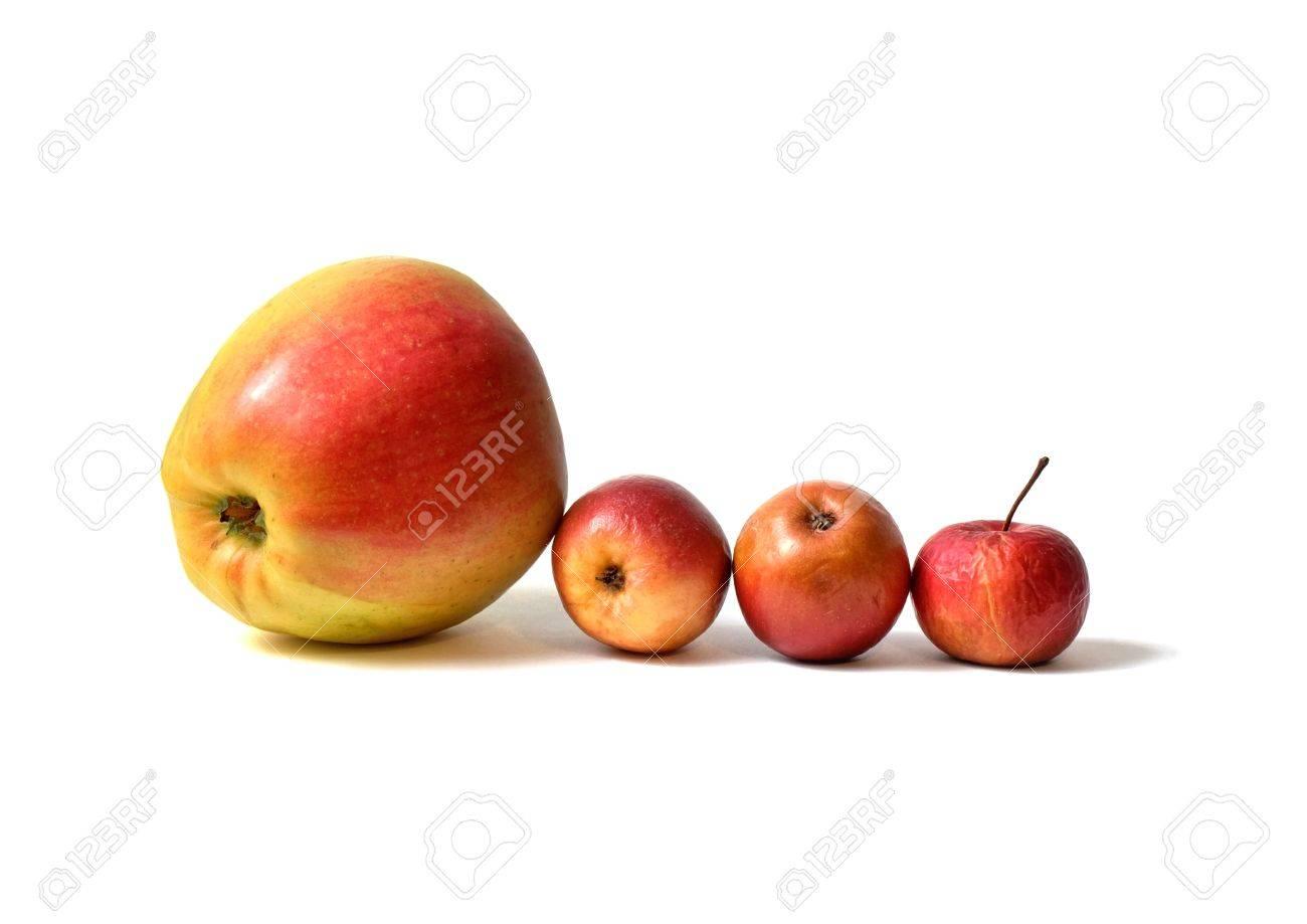 Atemberaubend Vier Äpfel - Ein Großer Apfel Aus Shop Und Drei Hausgemachte #YV_65
