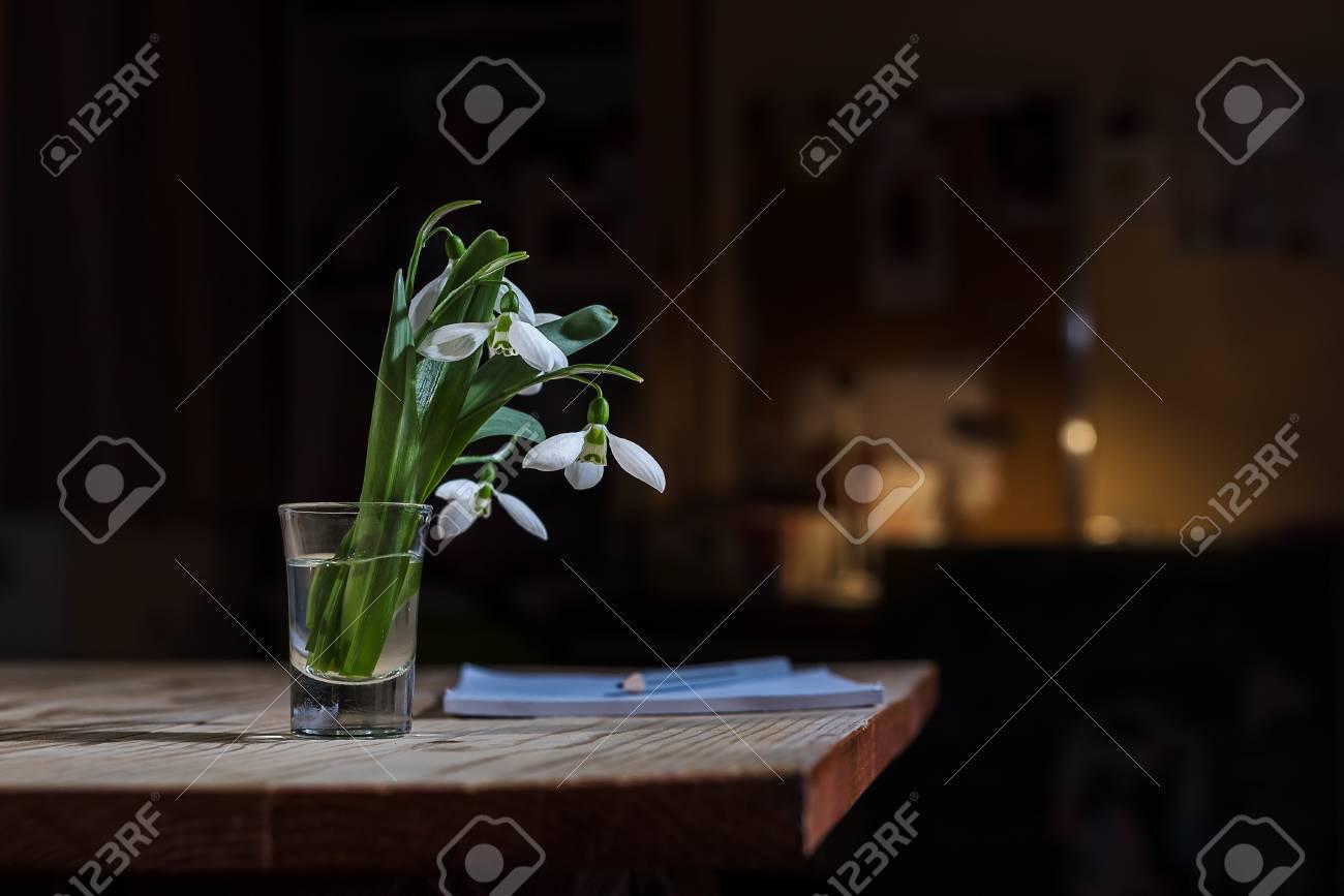 Witte lente bloemen sneeuwklokjes in thuis achtergrond interieur