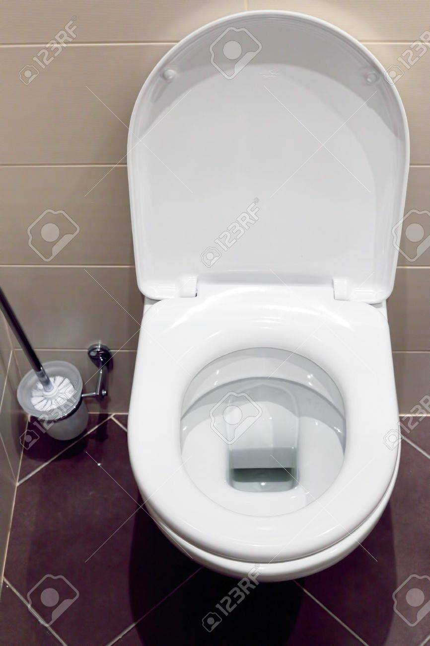 Interior of a typical water-closet with brush Stock Photo - 14498492