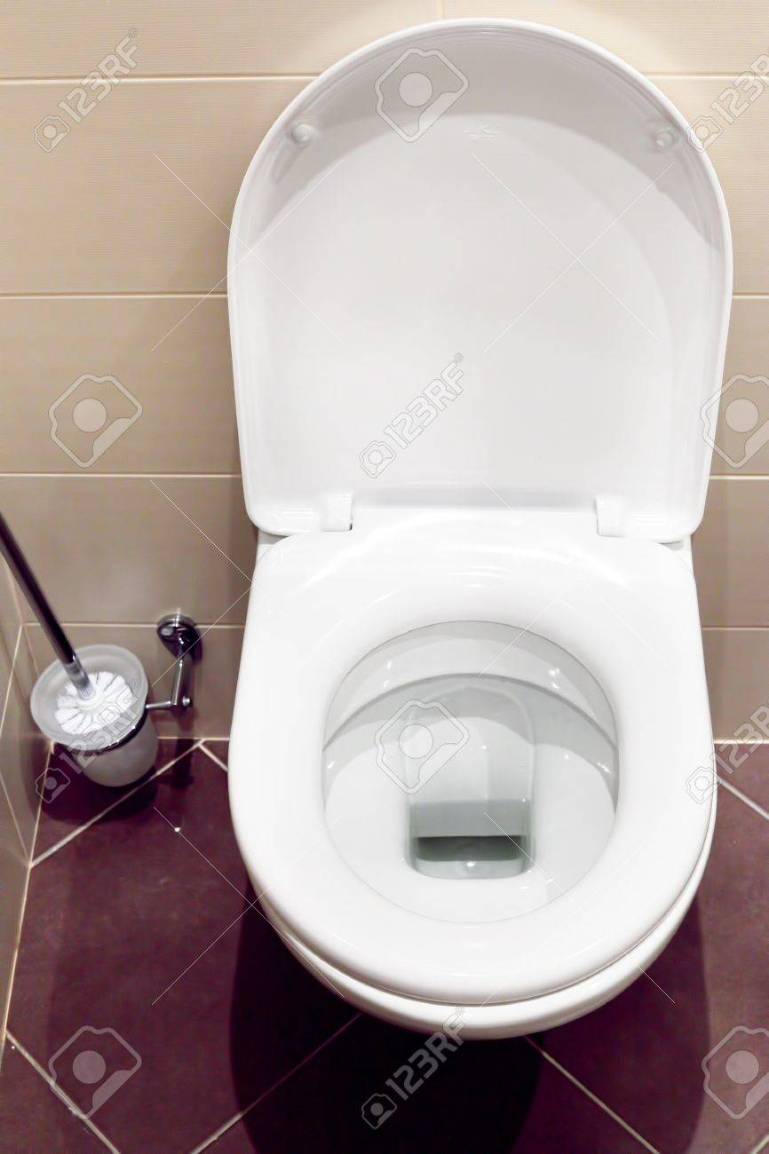 Interior of a typical water-closet with brush Stock Photo - 14503535