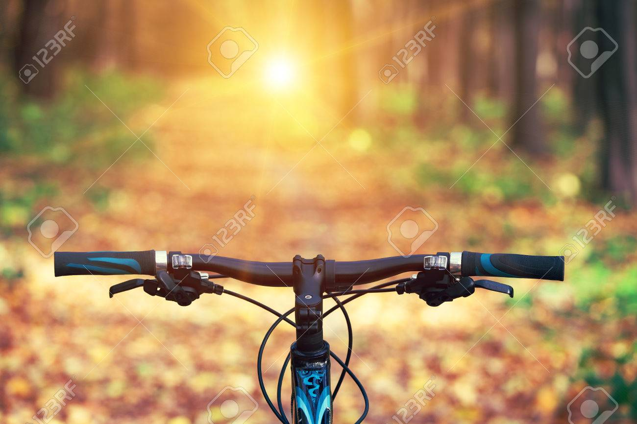 Mountain biking down hill descending fast on bicycle. View from bikers eyes. - 38429711